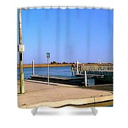 Sea Gulls Watching Over The Wetlands Shower Curtain