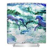 Sea Horses Shower Curtain