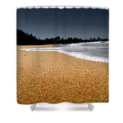 Sea Life 2 Shower Curtain