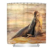Sea Lion Mom And Pup Love On Galapagos Island Shower Curtain