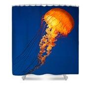 Sea Nettles V 8 Shower Curtain