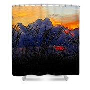 Sea Oat Sunset Shower Curtain