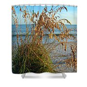 Sea Oats 1 Shower Curtain