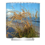 Sea Oats 2 Shower Curtain