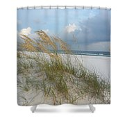 Sea Oats  Blowing In The Wind Shower Curtain