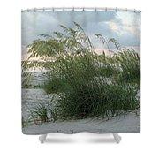 Sea Oats Shower Curtain