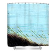 Sea Oats In The Wind Drawing Shower Curtain