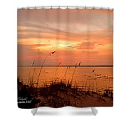 Sea Oats Sunset  Shower Curtain