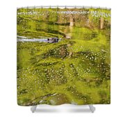 Sea Of Green Square Shower Curtain