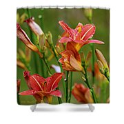 Sea Of Lilies Shower Curtain