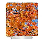 Sea Of Orange And Blue Shower Curtain