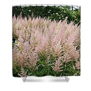 Sea Of Pink Shower Curtain