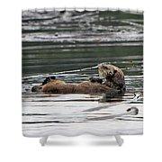 Sea Otter Profile Shower Curtain