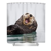 Sea Otter Scratching Head And Yawning Shower Curtain