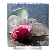 Sea Rose Shower Curtain by Barbara McMahon