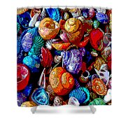 Sea Shell Abstract Shower Curtain