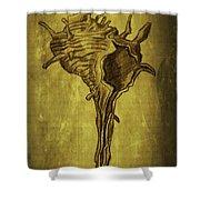 Sea Shell 1 Shower Curtain