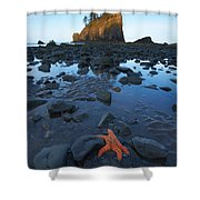 Sea Stacks And Star Fish Shower Curtain