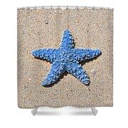 Sea Star - Light Blue Shower Curtain