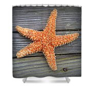 Sea Star On Deck 2 Shower Curtain