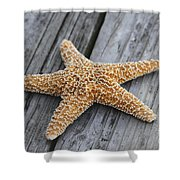 Sea Star On Deck Shower Curtain