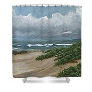 Sea Turtle Companions Shower Curtain