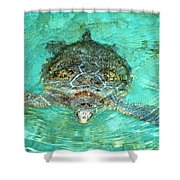 Single Sea Turtle Swimming Through The Water Shower Curtain