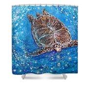 Sea Turtle Mr. Longevity Shower Curtain