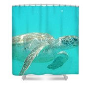 Sea Turtle Time Shower Curtain