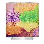 Sea Urchins - Abstract Shower Curtain