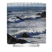 Sea View  Shower Curtain