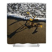 Sea Weed And A Wave Shower Curtain