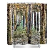 Seacliff Pier 2 Shower Curtain