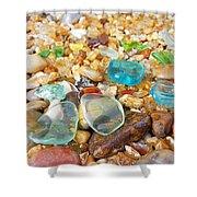 Seaglass Coastal Beach Rock Garden Agates Shower Curtain