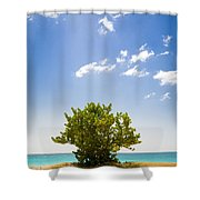 Seagrape Tree Shower Curtain