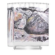 Seagull Among The Rocks Shower Curtain