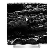 Seagull And Sandstone Shower Curtain
