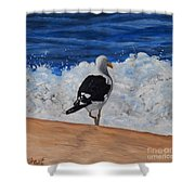 Seagull And Surf Shower Curtain