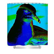 Seagull Art 2 Shower Curtain