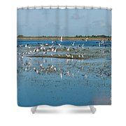 Seagull Flock Shower Curtain