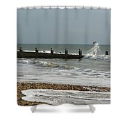 Seagull Groyne Shower Curtain
