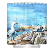 Seagull In Essaouira In Morocco Shower Curtain