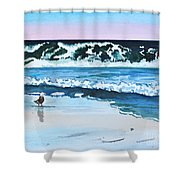 Seagull In The Sand Shower Curtain