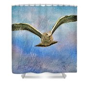Seagull In The Storm Shower Curtain