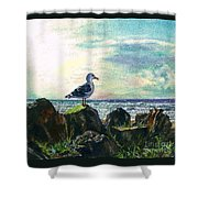 Seagull Lookout Shower Curtain
