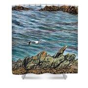 Seagull Over Rocks Shower Curtain