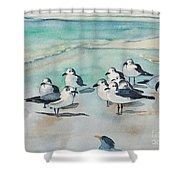 Seagull Party Shower Curtain