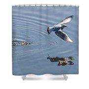 Seagull Reflection Shower Curtain
