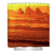 Seagull Soaring Over The Surf At Sunset Oregon Coast Shower Curtain