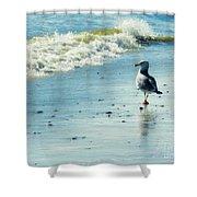 Seagull Stroll Shower Curtain